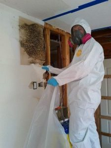 Mold Restoration Technician Doing Wall Removal